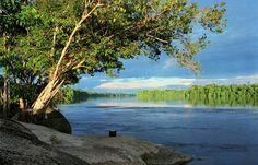 Bella... Amazonia venezolana