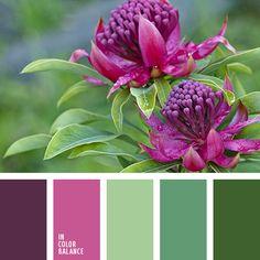 Цветовая палитра №2314