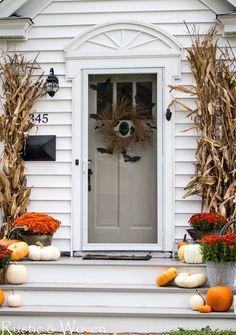 Halloween Bat Front Door