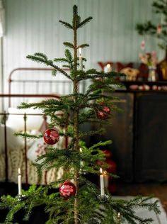 Cottage Christmas, Noel Christmas, Merry Little Christmas, Primitive Christmas, Country Christmas, Simple Christmas, All Things Christmas, Winter Christmas, English Christmas