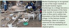 Number 13. This image is of a dog meat trade in western africa. I this makes you angry, then the thought of a pig, chicken, cow in it's position should enrage you as equally. If it does not, then you need to take a look at yourself in the mirror.