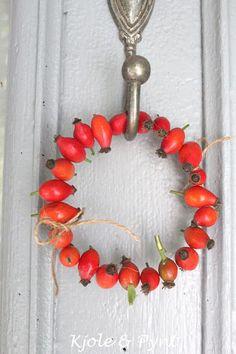 little rosehip wreath Fall Crafts, Decor Crafts, Diy And Crafts, Seasonal Decor, Fall Decor, Christmas Diy, Christmas Wreaths, Cream Flowers, Wreath Tutorial