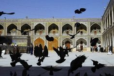 Shiite pilgrims visit the mosque built on the tomb of Imam Ali, the father of the Shia sect of Islam, in Najaf, Iraq. While the leadership of Iraq was primarily Sunni under Saddam, Shiites make up the majority of the population. (Thorne Anderson)
