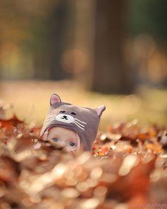 Here, kitty kitty!