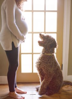 If you have a furry child you may be already wondering how they will adapt when you bring your fresh bundle home from the hospital. While your priorities will shift slightly with the new addition, especially in those early days, you will also be super excited to introduce the new baby to all members orContinue Reading...