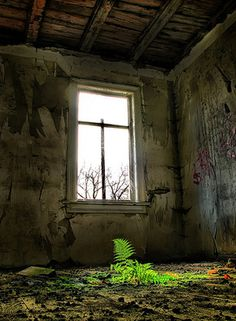 Amazing Photos of Abandoned and Decaying Buildings