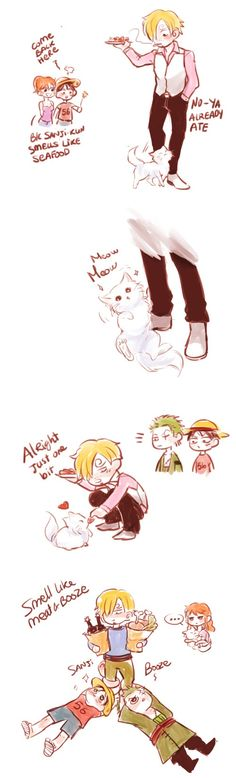 Sanji, Nami, Luffy, Zoro