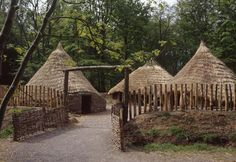 Roundhouses - Caledonians, Picts and Romans - Scotland's History www.educationscotland.gov.uk592 × 407Search by image A photograph of a reconstructed Iron Age round houses in a village setting Visit page 	 View image