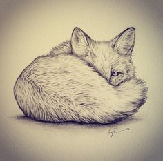 Christmas present commission of a peeping fox. Framed in an antique frame.