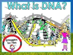 https://www.teacherspayteachers.com/Product/DNA-POWER-POINT-601396 The DNA STRUCTURE contains 50 slide show  power point presentation and 4 pages of students' notes. This presentation is fully animated: You will find 2 formative assessments, 1 set of review questions, 1 pop quiz and answer key..  With this product you will be able to explain the main structure and function of the DNA molecule.