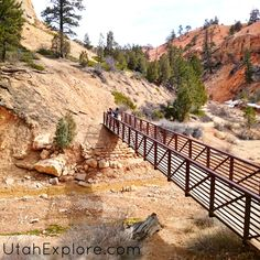 Top 5 Family Friendly Hikes at Bryce Canyon!