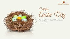 Check out the Best Happy Easter 2017 Wishes, Happy Easter Wishes, Best Happy Easter Wishes, Happy Easter Day Wishes, Religious Happy Easter Day 2017 Wishes. Happy Easter Photos, Happy Easter Wishes, Happy Easter Sunday, Easter Pictures, Free Facebook Cover Photos, Beautiful Facebook Cover Photos, Facebook Timeline, Timeline Covers, Fb Covers
