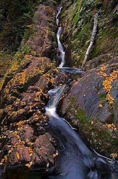 Morgan Falls, Wisconsin