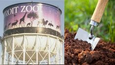FOX NEWS: Detroit Zoo tempts visitors with free buckets of animal poop