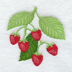raspberry fruit canasters   Machine Embroidery Designs at Embroidery Library…