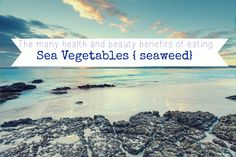 The many health and beauty benefits of eating sea vegetables