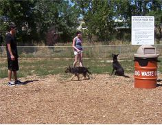 Here's how Canine Corral in Englewood posts signs to let visitors know how to collect dog waste and put it in the proper bin.