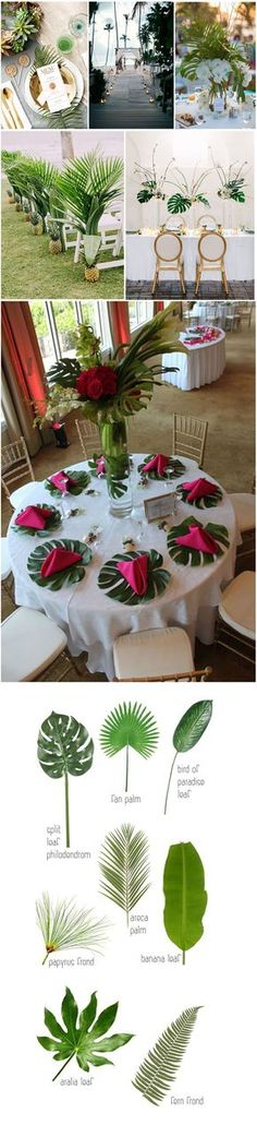 Wedding Flowers Tropicals Top 10 Flowers Themed Wedding for Outdoor Ceremony See more: Wedding Centerpieces, Wedding Table, Wedding Bouquets, Rustic Wedding, Wedding Flowers, Wedding Decorations, Trendy Wedding, Wedding Aisles, Wedding Backdrops