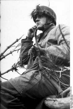German paratrooper observing the field from a treetop position, Monte Cassino, Italy, 1943-1944,  Photographer	   	Haas Source	German Federal Archive