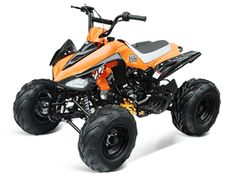 """ATV048 125cc ATV Semi-automatic 3-speed with Neutral and Reverse, Air Cooled, Remote Control, Engine Kill Switch, Front Drum/Rear Hydraulic Disc Brakes, 8"""" Wheels $789.00"""