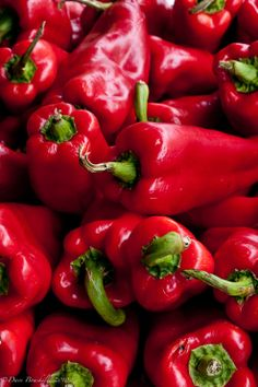 Paprika~some of the 23 kinds of hot peppers my son-in-law Kurt nows grows Fruit And Veg, Fruits And Vegetables, Fresh Fruit, Vegetables Photography, Stuffed Hot Peppers, Red Peppers, Raw Food Recipes, Farmers Market, Red Green