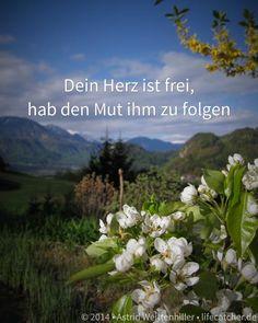 Wenn das Streben nach Glück dich unglücklich macht - http://lifecatcher.de/streben-nach-glueck/