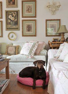 Seu animal costuma ficar dentro de casa? Separar uma almofada para ele ajuda. Olha como ela está chique no living.