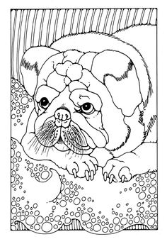 dog coloring page for adults