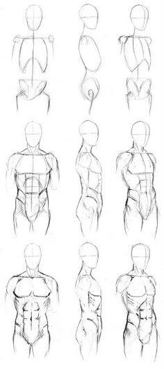 Learn to Draw: Human Body