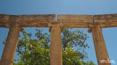 Jerash - Oval Forum. Ionic columns.