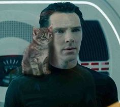 Or whose concerned facial expression is cuter. | 19 Very Important Photos Of Benedict Cumberbatch With Kittens