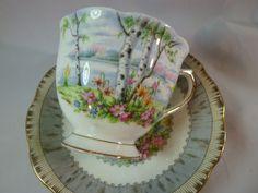 A Royal Albert TEA CUP AND Saucer Silver Birch Silver Birch Tree Vintage | eBay