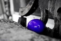 I've become the official family #photographer for special events, including #holidays. I took this #photo during the #Easter Bunny's visit, in 2012. ~ #photography #purple #geeks