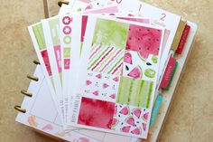 Watermelon Kit / Erin Condren Weekly Sticker Kit
