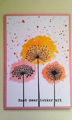 dandelions, pink, orange, yellow. love!