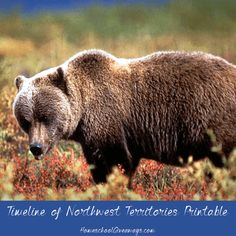 FREE Timeline of Northwest Territories History. Northwest Territories lies in the far north of the Dominion of Canada and includes islands in the Arctic Ocean. Dive into the history of the Northwest Territories with this free 7-page Canadian history printable. Create a map of the province, make a timeline of its history, and explore more of the province's past with writing prompts.