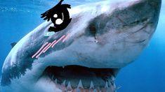 nice Watch KAWAII SHARKS! (Stranded Deep #2) | PewDiePie