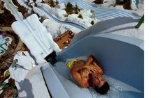 The family-friendly folks at Disney aren't necessarily known for pushing the envelope when it comes to thrill rides. The Summit Plummet at Disney's Blizzard Beach Water Park, however, is as extreme as water slides come.    It's 12 stories high -- good enough to be the tallest in the U.S. -- and features a 360-foot flume that carries riders to speeds between 50 and 60 mph.