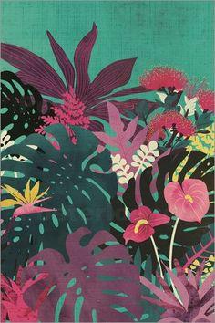 littleclyde - Tropical Tendencies