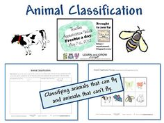 Animal Classification, Science Freebie