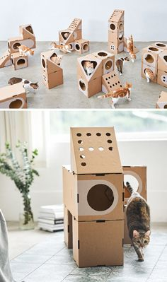 Design studio A Cat Thing have created a fun cardboard cat furniture that has a cariety of shapes and sizes. Taiwanese based design studio A Cat Thing have designed a modular collection of cat furniture that's made from cardboard. Cardboard Furniture, Pet Furniture, Modular Furniture, Furniture Ideas, Cat Shelves, Cat Room, Cat Accessories, Cat Crafts, Cat Tree
