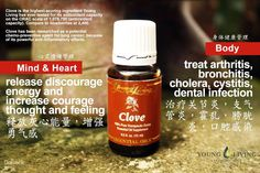 Young Living Clove 丁香  https://www.youngliving.com/signup/?isoCountryCode=US&sponsorid=1704613&enrollerid=1704613