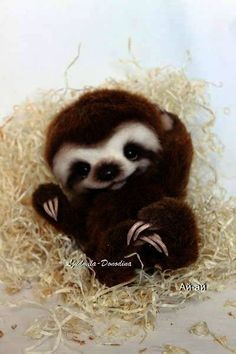 Baby Sloth By Ljudmila Donodina - I am very glad to introduce to you Baby Sloth. He is 13 sm in sitten position. He can't stand made from synthetics fax fur hand sculpted epoxy clay nose claws glass eyes armature in the arms and legs filled with polyester and metal granulate ...