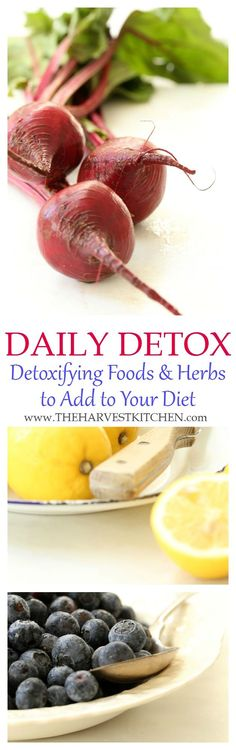 Incorporating a Daily Detox Diet into your life will improve the health of your immune system and digestive system, and it helps to stimulate the actions of your liver and kidneys which are the main sources of detoxification. @theharvestkitchen.com