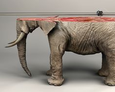 """""""If only they were this easy to reproduce."""" International Fund for Animal Welfare: Elephant. Advertising Agency: Y&R, Paris, France, 2015 Creative Advertising, Print Advertising, Advertising Agency, Print Ads, Ad Of The World, Saatchi Gallery, Best Ads, 3d Models, Animal Welfare"""