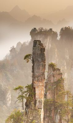 Chinese landscape Suloev Alex (breadth)