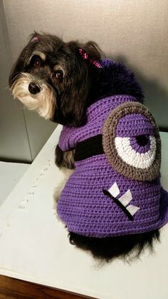 HandlingIt Creations: Evil Minion Crochet Dog Sweater