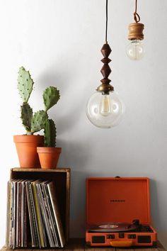 Cactus In Terracotta Pots