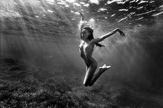 Photograph Siren by Sylvio Testa on 500px