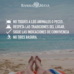 #FelizDomingo Web: http://www.tulumrealestate.com Cel 984.113.5749 - 984.130.6441 Email: info@tulumrealestate.com #Tulum #RivieraMaya #Mexico